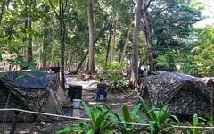 симиланские-острова-similan-islands-таиланд-7926 (travelordiephoto) Tags: similanislands thailand phuket пхукет симиланскиеострова симиланы таиланд