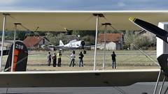 NORTH AMERICAN T6 TEXAN (François Magne) Tags: avion meeting replicair graulhet spectacle aérien acrobatie voltige lumix fz 300 atterrissage décollage piste aérodrome hélice aile vent north american t6 texan breguet 14 xiv