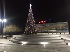 Huge and tall Christmas tree in Silistra, Bulgaria (photos.in.all.the.world.2018) Tags: silistra bulgaria town best christmas tree 2016 december 27 city small europe tall beautiful near 2017 dark shining huge