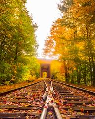Autumn Trestle (mikelan1986) Tags: fall trees travel trips landscape nature natural usa beautiful beauty autumn