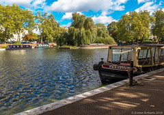 At Browning's Pool, Little Venice (Eiona R.) Tags: canong16 london london2018 littlevenice wfc