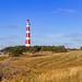 Bornrif Leuchtturm von Ameland