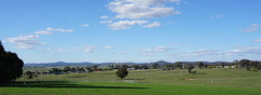 Pano across part of west Murrumbateman (spelio) Tags: actsep2018shawyassvalleynsw canberra australia sep 2018 rural art sculpture murrumbateman landscape rurual paddock