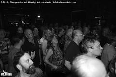 2018 Bosuil-Het publiek bij DVL en Beaux Gris Gris 6-ZW