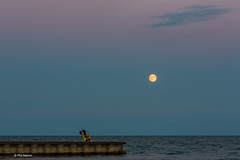Lake Ontario moonrise opposite the sunset - Balmy Beach, Toronto (Phil Marion) Tags: philmarion canadian toronto beach public candid woman girl boy teen 裸 asian milf oriental schlampe 나체상 벌거 desnudo chubby nackt nu ヌード nudo 性感的 malibog セクシー 婚禮 hijab philippemarion arab desi indian african chinese ebony latina khỏathân swinger telanjang nubile tattoo fetish erotic feet nude slim plump tranny sex slut nipples ass boobs tits upskirt naked sexy bondage fuck cameltoe cock gay wife crossdress ladyboy panties babe