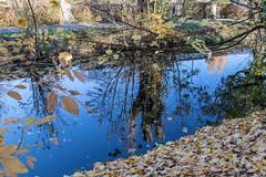 Herbst an der Alb - 15 (Heiko S.) Tags: karlsruhe badenwürttemberg deutschland de herbst alb albtal canon