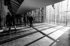 #306 Morning rush hour (tokyobogue) Tags: tokyo japan shibuya nexus6p nexus 365project blackandwhite blackwhite monochrome sunbeams sun shadows lines morning people street streetphotography