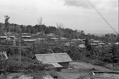 Album2film162-010 (Stichting Papua Erfgoed) Tags: stichtingpapuaerfgoed pace