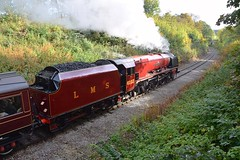 LMS Princess Coronation Class 6233 'Duchess of Sutherland' on her first run of the day, at the Midland Railway Centre, Butterly. 07 10 2018 (pnb511) Tags: midlandrailwaycentre derbyshire trains railway steam locomotive loco track train trees woodland 462 pacific duchessofsutherland lms express engine