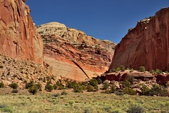 Vertical and Horizontal Layers of Rock (Capitol Reef National Park)