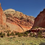 Vertical and Horizontal Layers of Rock (Capitol Reef National Park) thumbnail