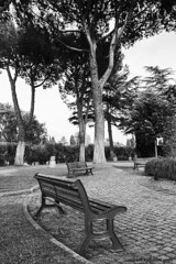 Benches in a park in Rome - Panchine in un parco a Roma (Giada Cortellini) Tags: bench benches panchine park parco waiting trees alberi attesa silence silenzio rome italy blackandwhite bnw biancoenero canon canonitalia nature natura monocromo rami cielo sky roma italia branches
