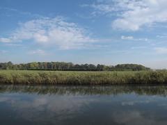 IMG_3380 (kassandrus) Tags: limespad hiking netherlands nederland law16 wandelen