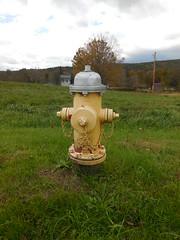 American Darling Valve - B62B - Bernardston, MA (nhhydrants) Tags: hydrant bernardston massachusetts