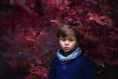 Liam (Gabriel Tomoiaga) Tags: portrait portraitphotography portraiture portraitmood kids kidsfashion forest colorful red blue sad fineart photographer photography life