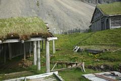 2Q8A2250 (marcella falbo) Tags: höfn iceland vikingvillage