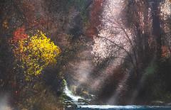 Autumn River (1 of 1) (Jami Bollschweiler Photography) Tags: autumn river waterfall utah landscape photography