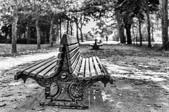 Porto (drasphotography) Tags: porto portugal bench monochrome monochromatic monotone blackandwhite bw schwarzweis bianconero drasphotography dof bokeh nikon d810 nikkor2470mmf28 trees baum bäume