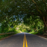 Green Road to Hana Maui Hawaii thumbnail