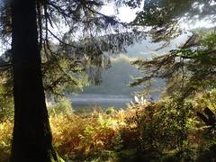 Blaen Bran Reservoir, Upper Cwmbran 4 October 2018 (Cold War Warrior) Tags: autumn reservoir cwmbran blaenbran