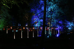 2018 - 4.10.18 Enchanted Forest (101) (marie137) Tags: forest lights trees show marie137 bright colourful pitlochry treeman attraction visit entertainment music outdoors sculptures wicker food drink family people water animation