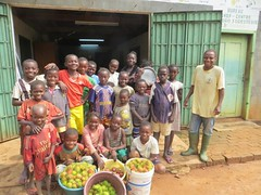CAR Gamboula - Kids starting a new business of selling fruit from Eden nursery (Foods Resource Bank) Tags: evangelical covenant churchcovenant world relief local partner acet foods resource bank frb central african republic car danger rebel groups tree nursery fruit income palm oil women children vegetables savings loan farmer coop humanitarian charity agriculture sustainable farming