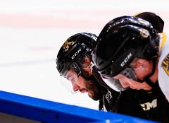 AIK-IK Pantern (Gabriel M Gustafson) Tags: aik aikhockey ishockey hockeyallsvenskan hovet sport sweden sportsphotography