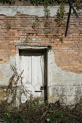 doorway to nowhere (SCRIBE photography) Tags: uk england dorset door doorway port portal derelict forgotten entry exit abandoned country brick bricks wall building