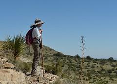 2018-09-30 Guadalupe Mountains NP 5 (JanetandPhil) Tags: 2018naturepreservesvariouslocations 20180910artxaznmvacation guadalupemountainsnationalpark guadalupemountains nationalpark smithspringtrail nikon nikkor d4 2470mmf28