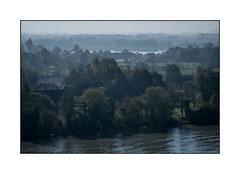 Bord de Seine en nature (SiouXie's) Tags: couleur color fujifilm fuji fujixe2 55200 siouxies duclair paysage landscape nature rivière river seine arbre tree