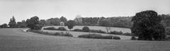 The house on the hill (alasdair.matthews) Tags: film filmisnotdead foma fomapan fomapan100 6x17 5x7 13x18 analogue analog blackandwhite monochrome landscape largeformat bw ilford id11 sheet burkeandjames fujifilm fuji 300mm f8