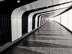 (sheffchris) Tags: london stpancras subway underground tunnel bw modern stripes pattern architecture ceiling walls lines floor
