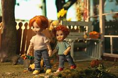 Barclay and Fergus (kinmegami) Tags: diorama doll dollhouseminiature ooak roombox cupoche obitsu11 obitsu mattel hybrid fall polymerclay paper miniatureflowers