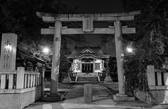 #274 Hikawa jinja at night (tokyobogue) Tags: tokyo japan ukimafunado hikawashrine hikawajinja hikawa shrine nikon nikond7100 d7100 sigma sigma1750mmexdcoshsm blackandwhite blackwhite monochrome night dark shadows 365project