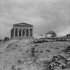 Tempio della Concordia (tommaso.piccoli) Tags: 2018 agrigento bn bencini valleditempli tempio tempiodellaconcordia analogicait
