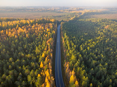 It's the journey, not the destination that matters (Teemu Kustila Photography) Tags: drone autumn finland dronephotography aerial forest green road roadtrip sunrise beatiful shadow bike motorcycle