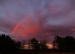 Partial Pink Bow..x (Lisa@Lethen) Tags: partial rainbow pink rain shower morning weather cloud silhouettes trees