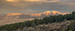 Scout Mountain - Idaho