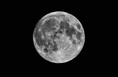 Full Moon (tsbl2000) Tags: moon fullmoon nikond810 tamron150600mmf563