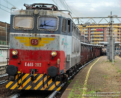 Ultimi fregi (HD Trainspotting) Tags: e655 caimano fs old livrea milano lambrate 2014 e655202
