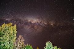 The milky way over Hanmer Springs (Kiwi Jono) Tags: milky way stars sky trees springs newzealand pentax pentaxk1 sigma20exdg18 hanmer