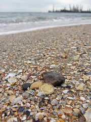 53146606 (aniaerm) Tags: sea coastalfinds sand