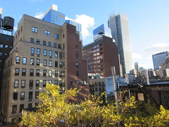 2018 November Dropping Leaves Tree 4219 (Brechtbug) Tags: 2018 november dropping leaves tree virtual clock tower from hells kitchen clinton near times square broadway nyc 11032018 new york city midtown manhattan fall autumn weather building dark low hanging cloud hell s nemo southern view ny1rain