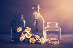 Spring memories (Ro Cafe) Tags: stilllife flowers daisies bottles textured nikond600 nikkormicro105f28