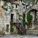 Living Among the Ruins