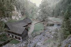 (Dominik Jursa) Tags: agfa vista iso100 expired film c41 color slovakia