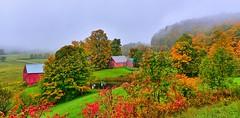 DSC_7718_19_20_easyHDR (Autumn four seasons) Tags: vermont fallcolors