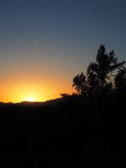 P6309826 (carriemoranphotos) Tags: arizona sedona redrocks trees travel sunrise sunset red usa roadtrip