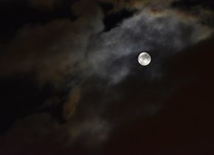 _DSC3253 : cache cache avec la lune (pascalvu1) Tags: france moonlight d7200