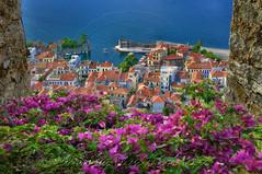 Nafpaktos (Lepanto) (Dimitil) Tags: nafpaktos lepanto aetoloakarnania greece hellas sea seascape flowers history castle port boats